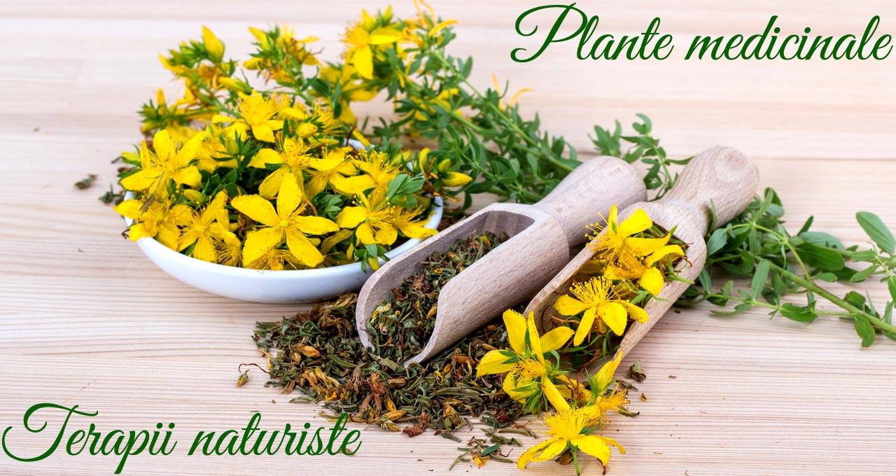 plante naturiste